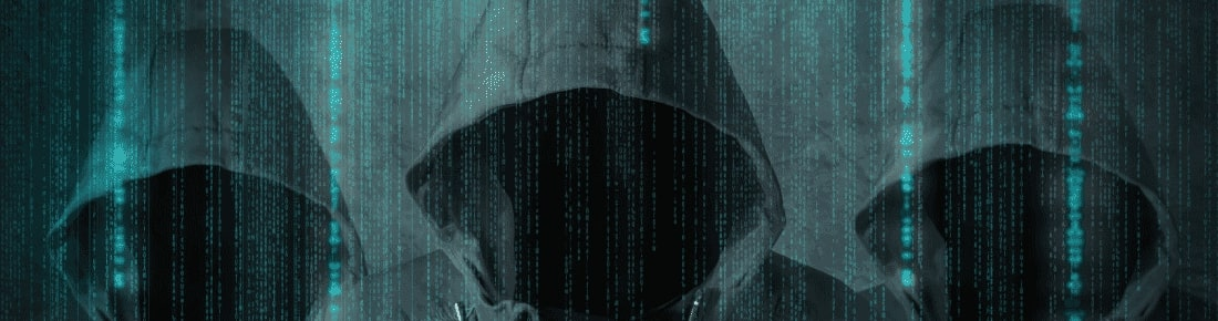 Synthetic Identity Theft